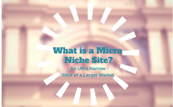What is a Micro Niche Site Featured Image