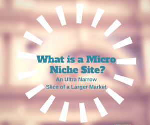 What is a Micro Niche Site