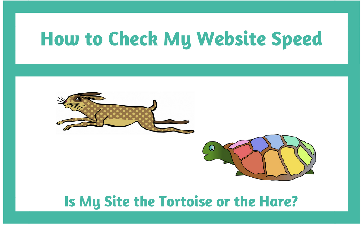 How to Check My Website Speed