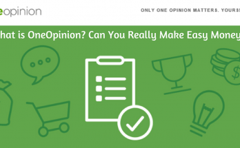What Is OneOpinion