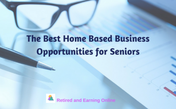 Home Based Business Opportunities for Seniors
