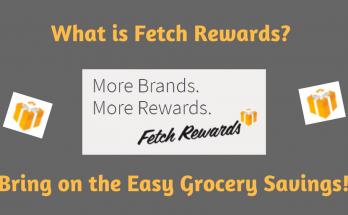 What is Fetch Rewards