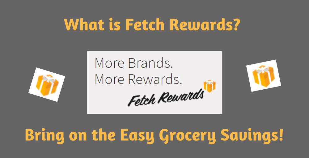 What is Fetch Rewards